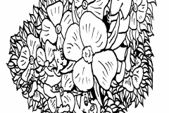 Flower-Wandering001a-a4L